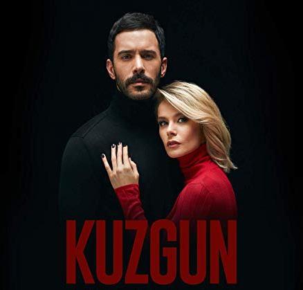 kuzgun novela turca